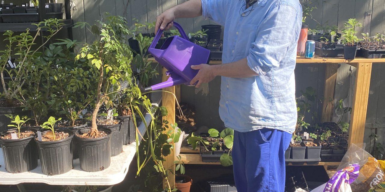 Merritt's Cannabis Cultivation Class Set to Begin