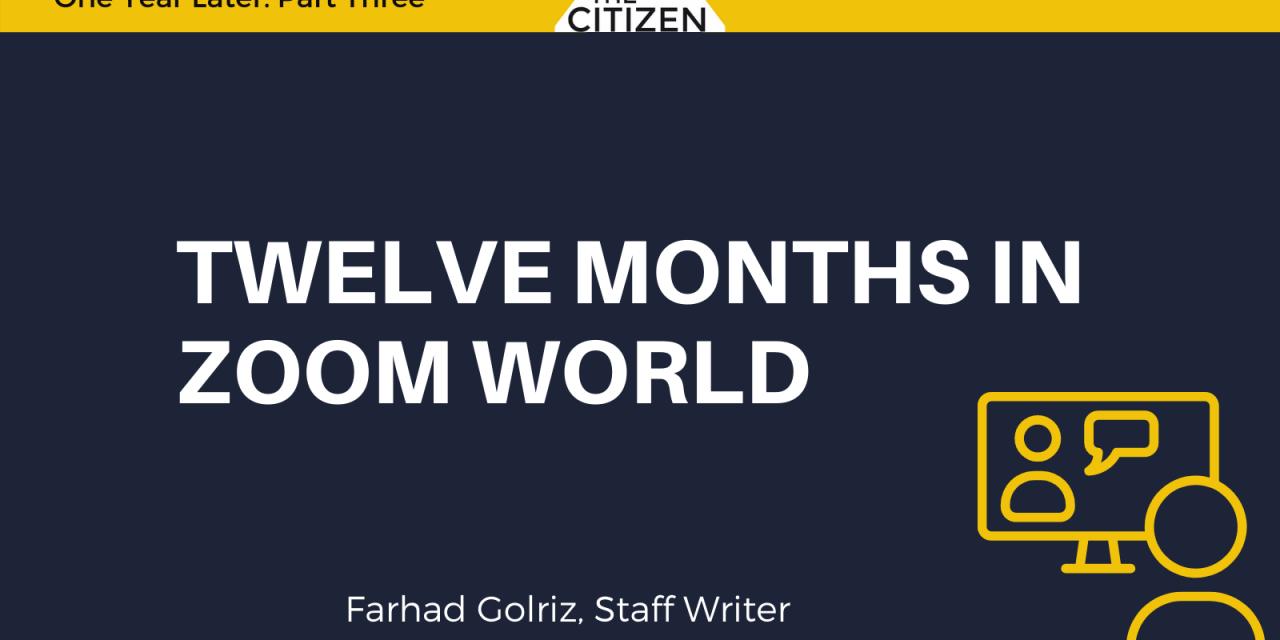 Twelve Months in Zoom World