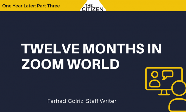 Twelve Months in Zoom World
